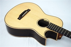 New Terry Pack PLRS Parlour guitar, solid rosewood back/sides, hand made, amazing opportunity.